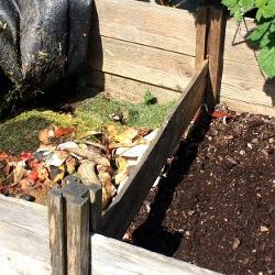 compost-heap