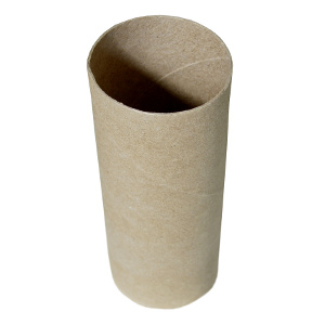 toilet-roll-tube