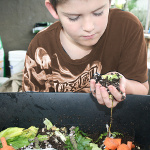 boy-with-compost-150-brown