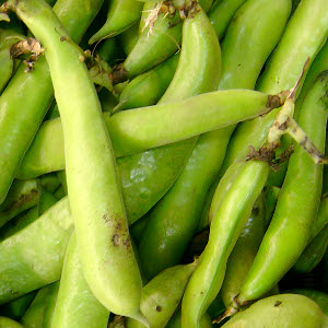 Broad (fava) bean pods