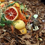 composting-fruit-150