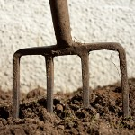 gardening-fork-150