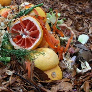 composting-fruit-300